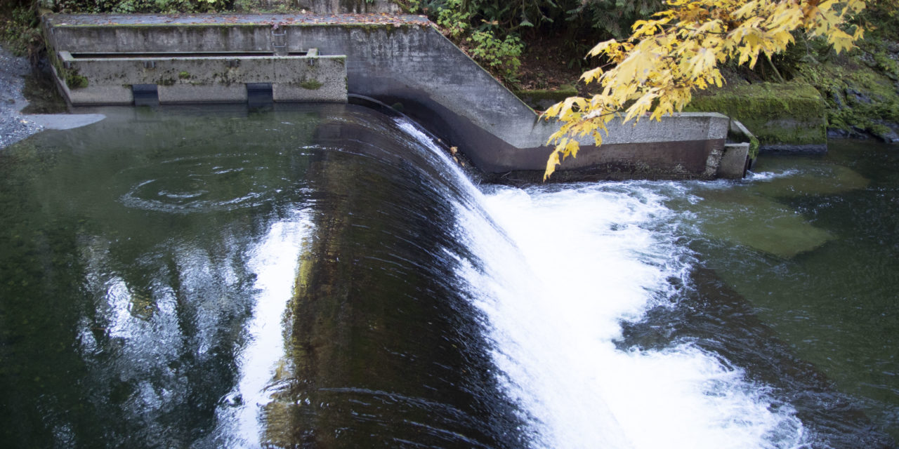 Pilchuck Dam removal to restore fish access to pristine habitat
