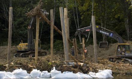 Treaty Tribes Leverage Almost $2 Million to Restore Salmon Habitat and Create Jobs
