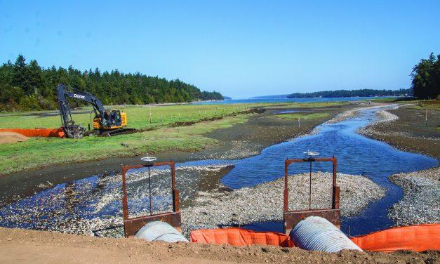 Port Gamble S'Klallam Tribe Habitat Survey Leads to Major Fish Passage Restoration