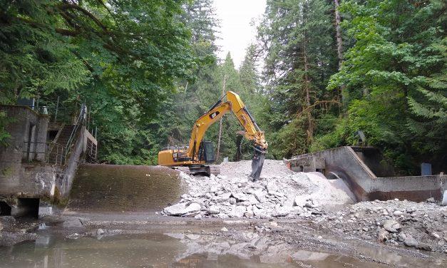 Long-Awaited Dam Removals Open Up Salmon Habitat