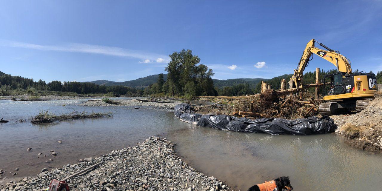 Major Salmon Habitat Restoration Completed in Nooksack River