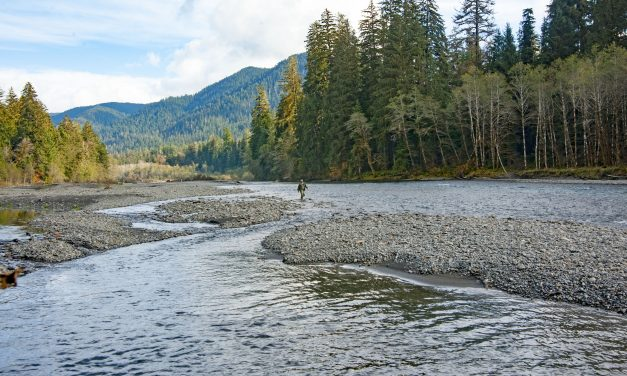 Tribal Watersheds Report Shows Little Improvement, but Hope Remains