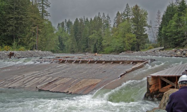 It's Time to Get Rid of the Fish-Killing Electron Dam