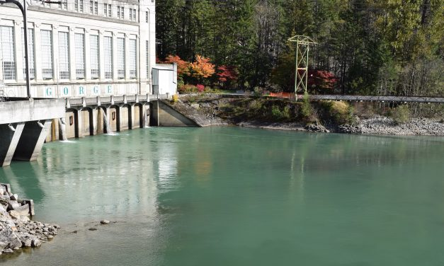 What are the true costs of the Skagit River hydroelectric dams?
