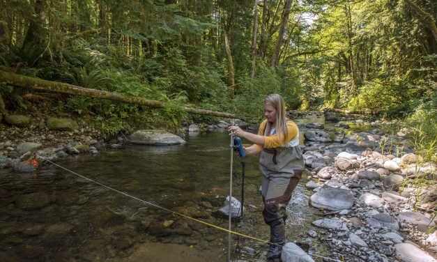 Tribes Establishing Lowest Flows of Streams in Summer