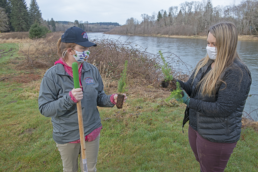 Quileute Tribe's Watershed Plan Helps Guide Partnership that Benefits Salmon in Quillayute River