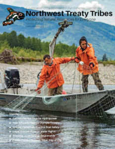 fishermen gillnet for spring chinook salmon during brief fishery
